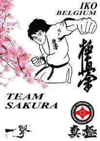 Team Sakura